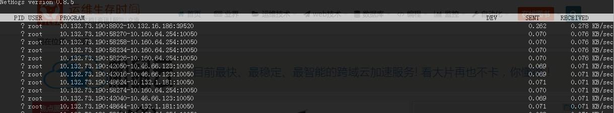 nethogs 查看 Linux 进程的网络使用